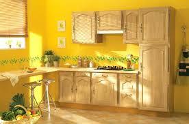 quelle cuisine choisir quelle peinture pour la cuisine quelle couleur choisir pour la