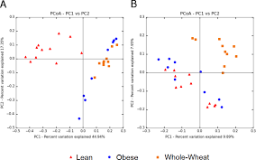 influence of whole wheat consumption on fecal microbial community