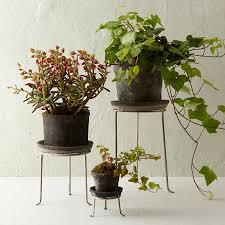 Modern Houseplants by Plant Stand Style With A Modern Twist