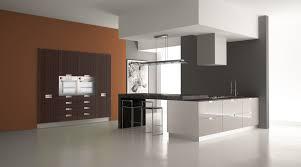 Austin Kitchen Design by Austin Tx Cabinets Kitchen Cabinets Design Austin Dream Kitchen