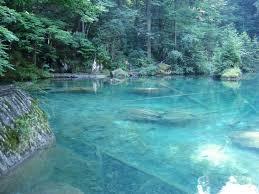 Montana wild swimming images Best 25 flathead lake montana ideas flathead lake jpg
