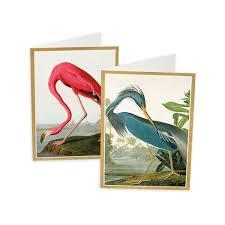caspari cards audubon birds boxed note cards 8 note cards 8 envelopes caspari