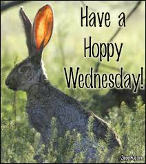 Happy Wednesday Meme - happy wednesday glitter graphics comments gifs memes and