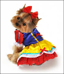 Cheap Dog Costumes Halloween Funny Dog Costumes Halloween Download U2013 Pet Photos Gallery