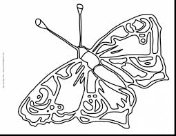 fantastic blank butterfly coloring pages with butterfly coloring