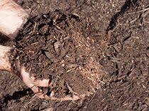 Garden Mulch Types - the mulch centre