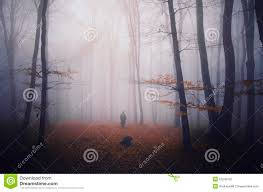 shadow ghost on halloween in dark forest with fog stock photo
