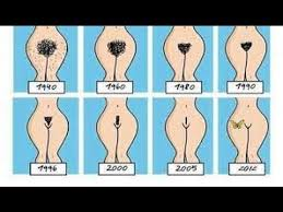 pubic hair on thigh ladies do you shave your pubic hair if yes then you must read