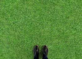 Laminate Effect Vinyl Flooring Lawn Atrafloor