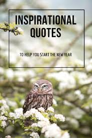 quotes about life s hurdles inspirational quotes to help you start the new year happynewyear