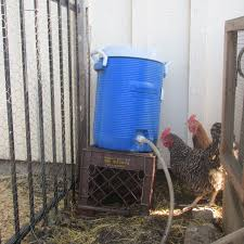 Air Conditioned Rabbit Hutch Helping Animals Through The Summer