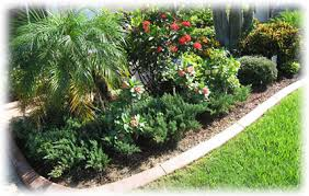 ornamental plants and trees pest specialists