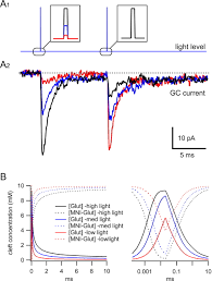 flashy science controlling neural function with light journal