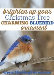 146 best bird ornaments decorations images on