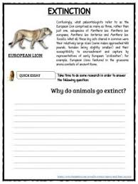 lion facts worksheets u0026 information for kids