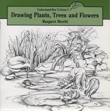 drawing trees plants and flowers understand how to draw amazon