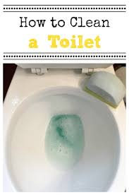Comet Bathroom Cleaner by How To Clean A Toilet