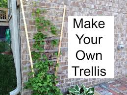 how to build an arbor trellis make your own trellis youtube