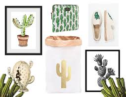trend all cactus everything bits and bobs by eva