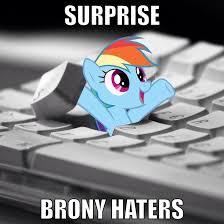 Rainbow Dash Meme - rainbow dash meme 1 by aussierainbowdash on deviantart