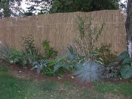 reed fencing covers ugly chain link reed fencing chain link