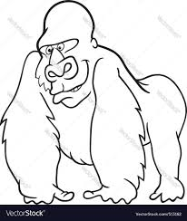 gorilla for coloring book royalty free vector image