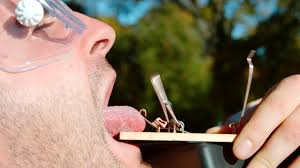 Challenge Mo Guys Tongue In A Mouse Trap The Mo Guys