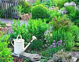Outdoor Garden Design Ideas Herbal Landscaping Herb Garden Design Ideas Top Herb Plants Home