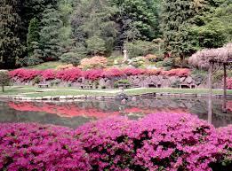 japan japanese garden