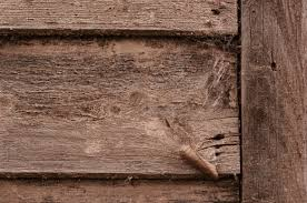 edge of an old wooden wall background wood plank texture www