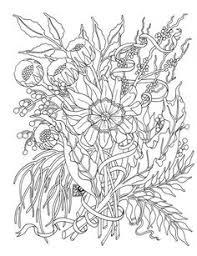 ausmalen erwachsene hippocampes line drawings pinterest