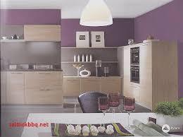 conseil peinture cuisine conseil couleur peinture cuisine simple couleur peinture tendance