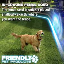 amazon com friendly pet products wireless dog fence outdoor pet