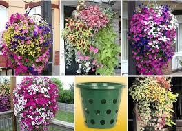 diy vertical gardening idea diy projects usefuldiy com