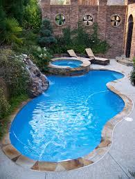 backyard oasis pools free form pool dunwoody