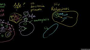 viruses video khan academy
