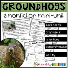 groundhog day cards groundhog day teaching resources teachers pay teachers