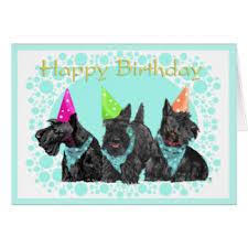 scottie birthday cards invitations greeting photo cards zazzle