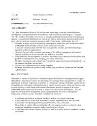 resume skills summary examples essays anthologies book reviews kirkus reviews examples of unforgettable receptionist resume examples to stand out janitor professional profile resume professional summary examples summary of