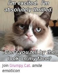 Smiling Cat Meme - 25 best memes about cat smiling cat smiling memes