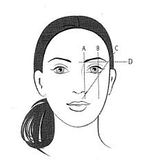 proper way to fill in eyebrows how to angle eyebrows shape your brows like a pro jane iredale