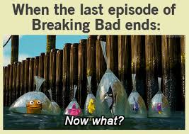 Funny Breaking Bad Memes - why did breaking bad finish memes com breaking bad meme 100 images