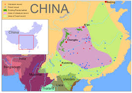 Kunming China Map by Carbon Conservation From Giant Pandas To Swiss Grocer Ecosystem