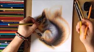 drawing a squirrel youtube