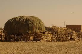thar desert file village in thar desert jpg wikimedia commons