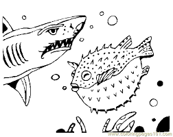 shark coloring 03 coloring free shark coloring pages