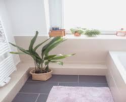 licht fã r badezimmer pflanzen frs bro wenig licht top gallery of feng shui pflanzen fr
