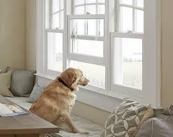 Marvin Retractable Screen Buying Tips Window Screens Door Store And Windows
