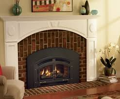 Living Rooms With Wood Burning Stoves Fireplace Vs Stove The Wood Burning Showdown