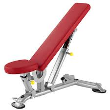 Life Fitness Multi Adjustable Bench Adjustable Weight Bench All Architecture And Design